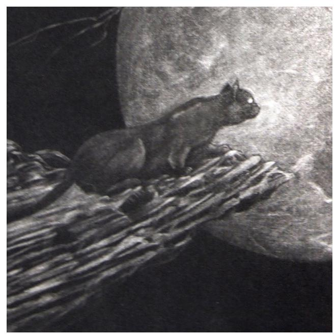 銅版画シート:領域/黒猫と烏