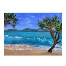 座間味島の砂浜