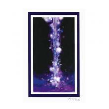 雨が奏でる拍子ー紫