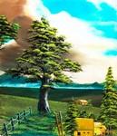 大木と民家