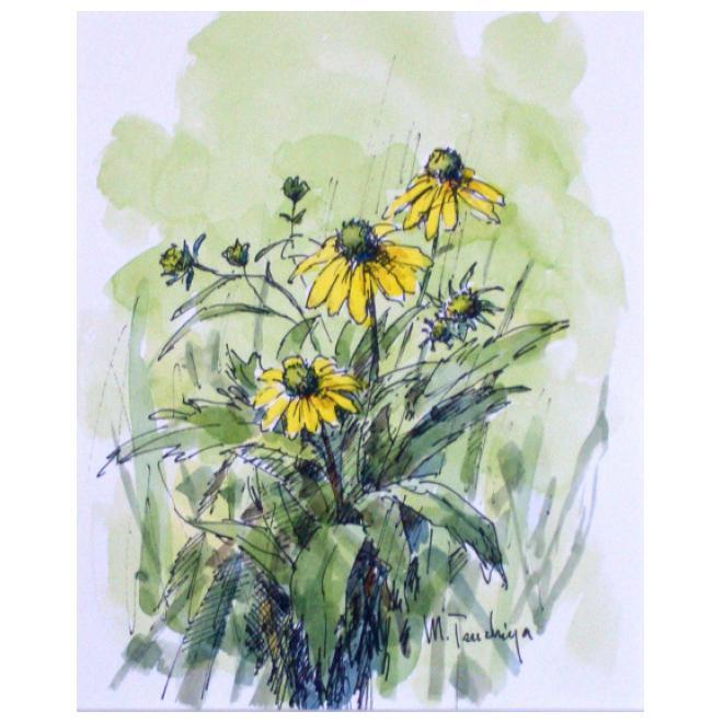野に咲く黄花