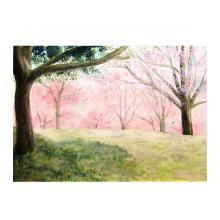 桜咲く 【額付き】